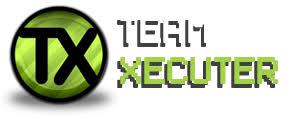 Team-executer